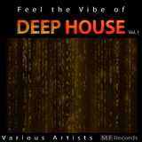 Feel the Vibe of Deep House, Vol. 1 by Various Artists mp3 download