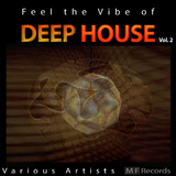 Feel the Vibe of Deep House, Vol. 2 by Various Artists mp3 download