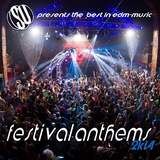 Festival Anthems 2k14 ( Su Presents the Best in Edm Music ) by Various Artists mp3 download