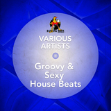 Groovy & Sexy House Beats by Various Artists mp3 download