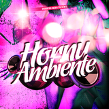 Horny Ambiente by Various Artists mp3 download