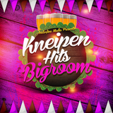 Kneipen Hits Bigroom by Various Artists mp3 download