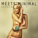 Meets Minimal Session, Vol. 1 by Various Artists mp3 download