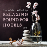 New Winter Health & Spa - Relaxing Sound for Hotels 2015 by Various Artists mp3 download