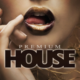 Premium House by Various Artists mp3 download