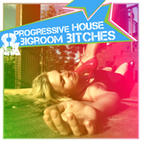Progressive House & Bigroom Bitches by Various Artists mp3 download
