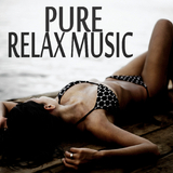 Pure Relax Music by Various Artists mp3 download