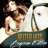 Reiter Hits - Bigroom Edition by Various Artists mp3 download