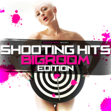 Shooting Hits - Bigroom Edition by Various Artists mp3 download