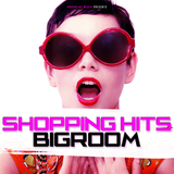 Shopping Hits Bigroom  by Various Artists mp3 download
