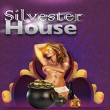 Silvester House by Various Artists mp3 download