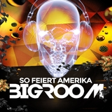 So feiert Amerika Bigroom by Various Artists mp3 download