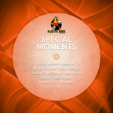 Special Moments by Various Artists mp3 download