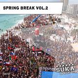 Spring Break, Vol. 2 by Various Artists mp3 download