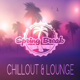 Spring Break Chillout & Lounge by Various Artists mp3 download