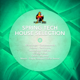 Spring Tech House Selection by Various Artists mp3 download