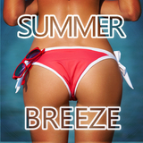 Summer Breeze by Various Artists mp3 download