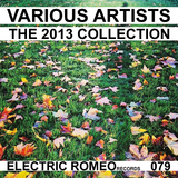 The 2013 Collection by Various Artists mp3 download