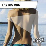The Big One by Various Artists mp3 download