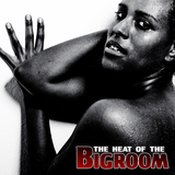 The Heat of the Bigroom by Various Artists mp3 download