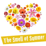 The Smell of Summer by Various Artists mp3 download