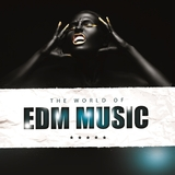 The World of Edm Music by Various Artists mp3 download