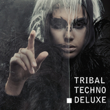Tribal Techno Deluxe by Various Artists mp3 download