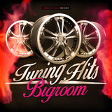 Tuning Hits Bigroom by Various Artists mp3 download