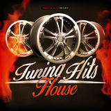 Tuning Hits House by Various Artists mp3 download