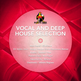 Vocal and Deep House Selection by Various Artists mp3 download