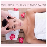 Wellness, Chill Out and SPA by Various Artists mp3 downloads