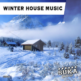 Winter House Music by Various Artists mp3 download