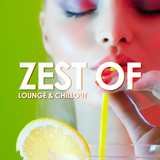 Zest of Lounge & Chillout by Various Artists mp3 download