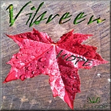 Hope by Vibreen mp3 download