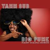 Big Funk by Yann Sub mp3 download