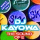 DJ Kayowa The Sound of E