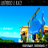 Goldfish/Boom Kat by Lektricks & R.D.S mp3 download