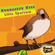 Kommander Keen Little Sparrow