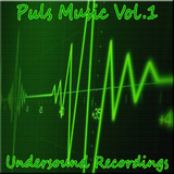 Puls Music Vol 1 by Various Artists mp3 download