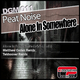 Peat Noise Alone in Somewhere Ep