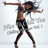 Nice to Chill You: Vol.1 by Various Artists mp3 download