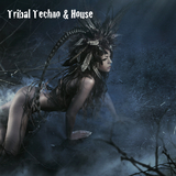 Tribal Techno & House by Various Artists mp3 download