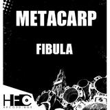 Fibula by Metacarp mp3 download