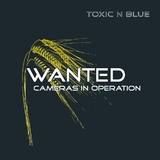 Wanted by Toxic N Blue mp3 download