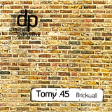 Brickwall by Tomy .45 mp3 download
