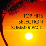 Top Hits Selection Summer Pack by Various Artists mp3 download