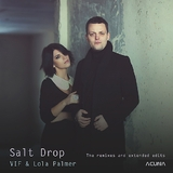 Saltdrop the Remixes and Extended Edits by V I F & Lola Palmer mp3 download