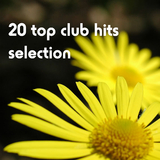 20 Top Club Hits Selection by Various Artists mp3 download