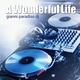 Gianni Paradiso Dj A Wonderful Life