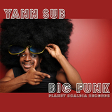 Big Funk by Yann Sub mp3 download